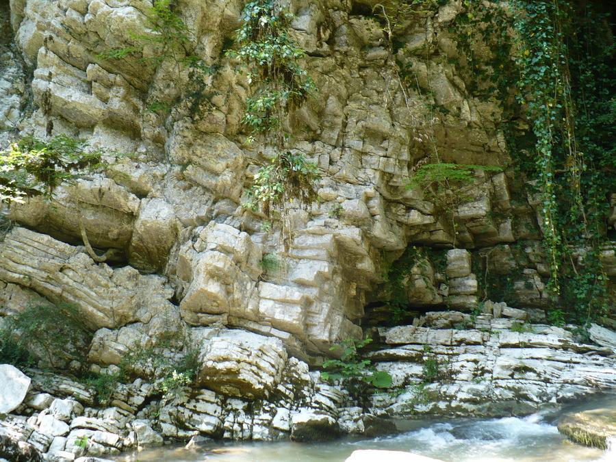 Белые скалы Сочи фого