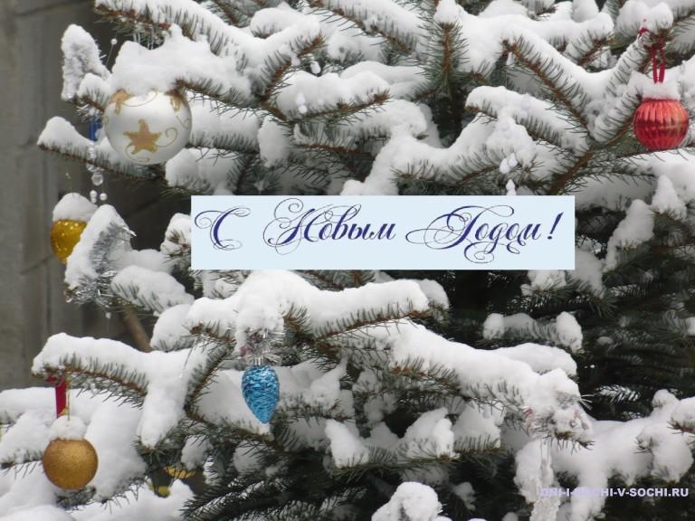И в Сочи бывает зима !