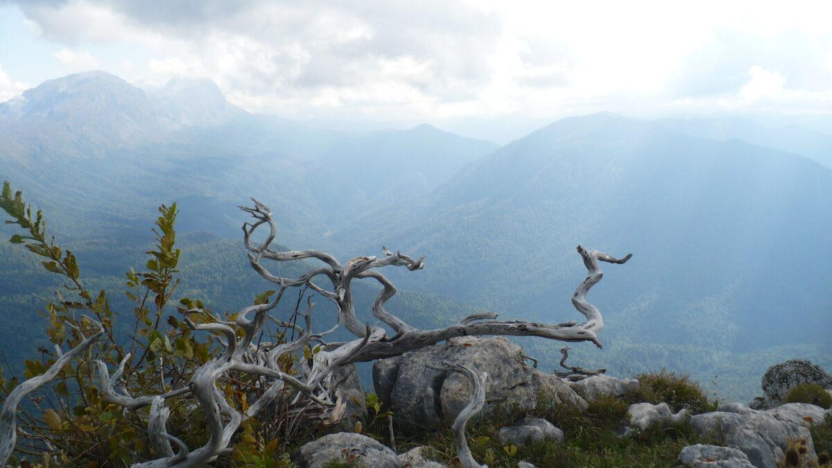 Плато Черногор и озеро Чеше