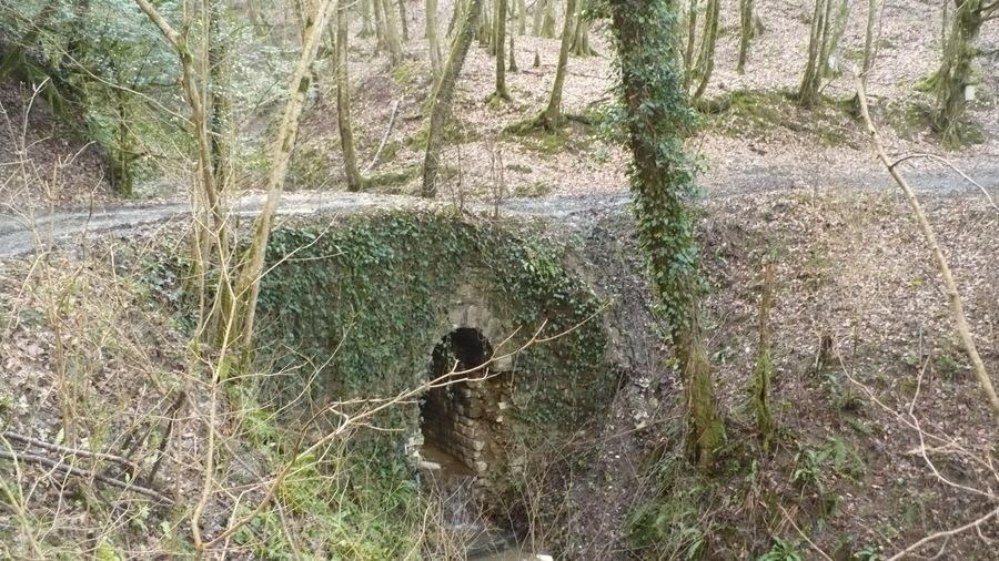Каменные мосты Красная воля