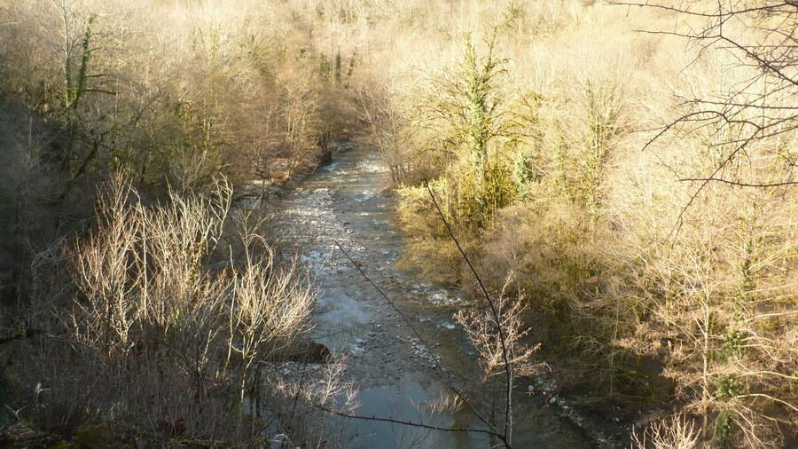 река Большая Хоста