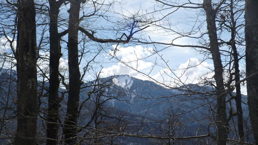 вид с горы Монашка