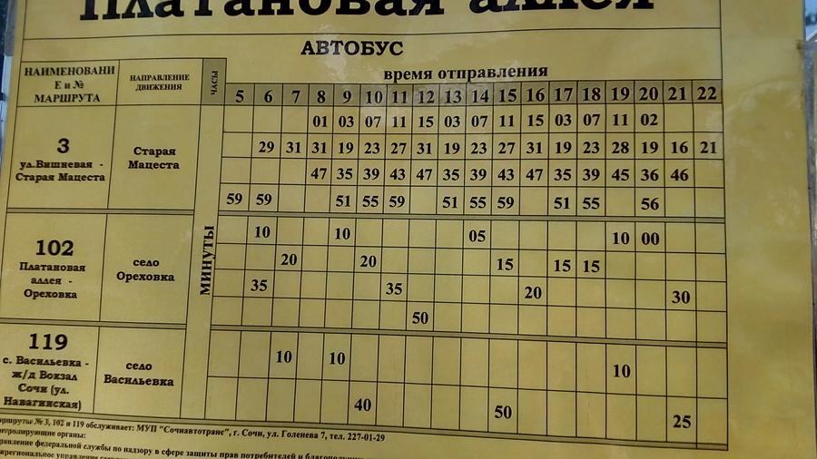 Расписание автобуса 102 от Плата новой аллеи