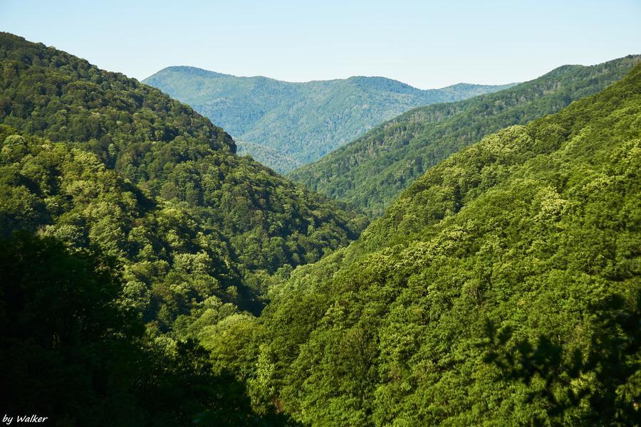 долина реки Псезуапсе