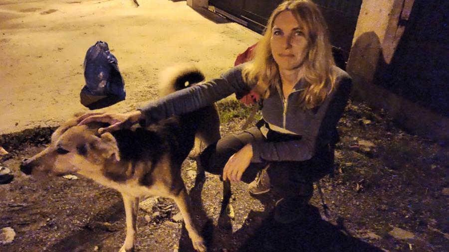 Лучший пес Пластунки