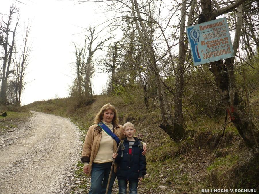дорога на Ивановский водопад