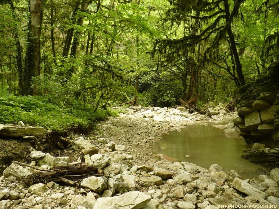 река Дзыхринка