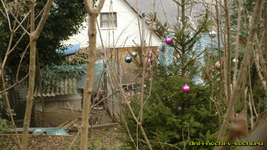 домик и новогодняя ёлочка