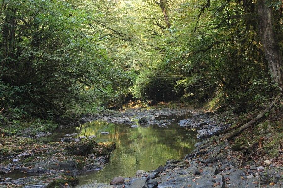 река Лоо