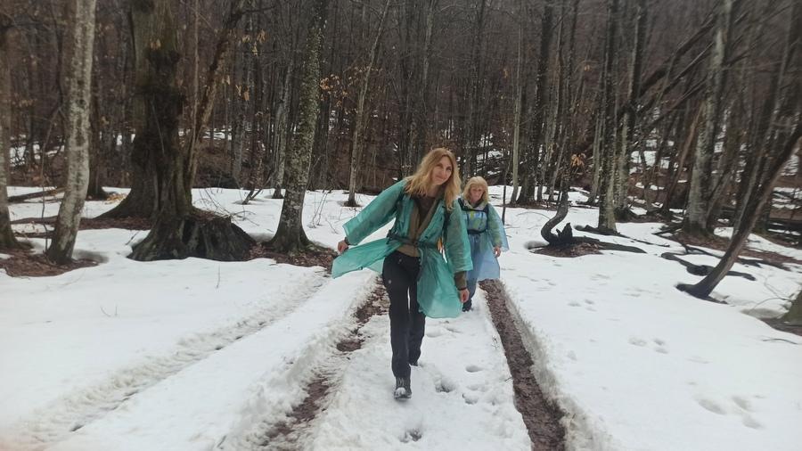 снег в лесу весной картинки
