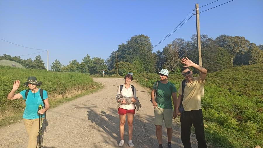 дорога через чайные плантации